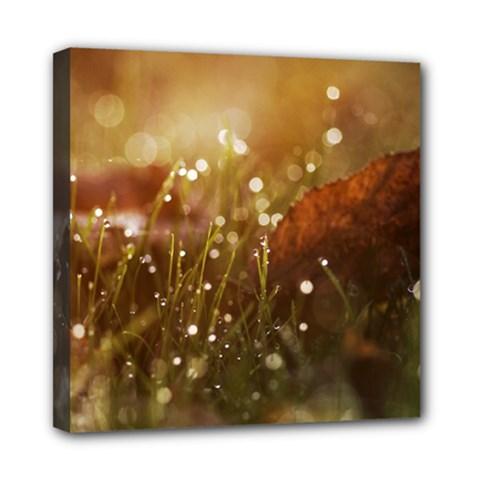 Waterdrops Mini Canvas 8  X 8  (framed)