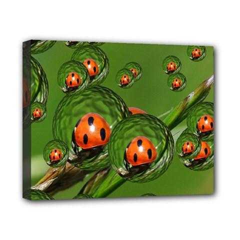 Ladybird Canvas 10  X 8  (framed)