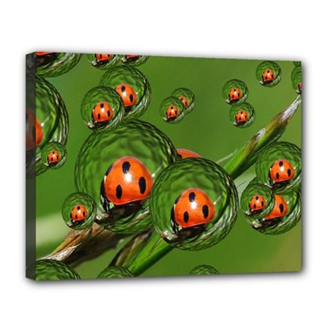 Ladybird Canvas 14  X 11  (framed)