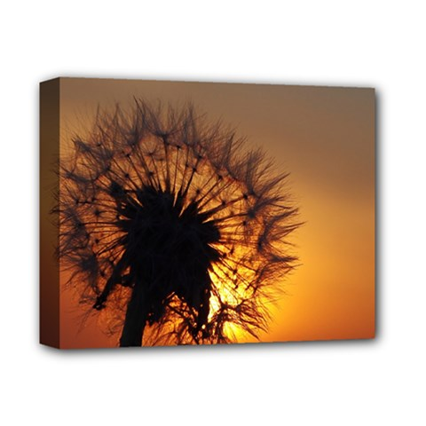 Dandelion Deluxe Canvas 14  X 11  (framed) by Siebenhuehner