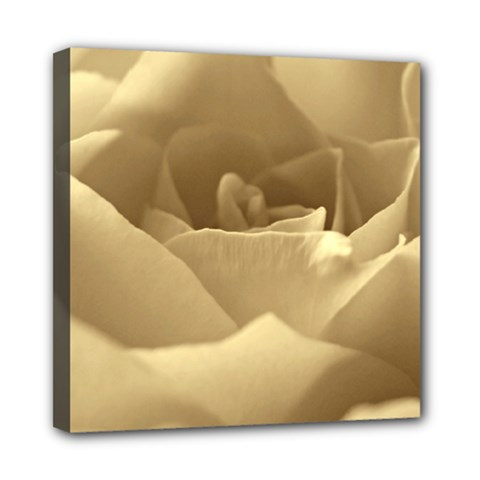 Rose  Mini Canvas 8  X 8  (framed) by Siebenhuehner