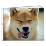 art yo - 7x5 Photo Book (20 pages)