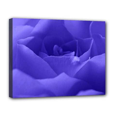 Rose Canvas 14  X 11  (framed) by Siebenhuehner
