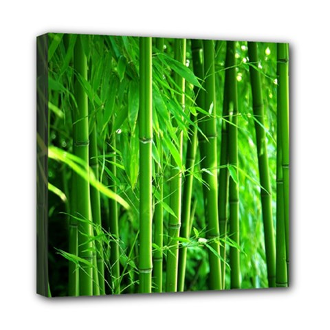 Bamboo Mini Canvas 8  X 8  (framed) by Siebenhuehner