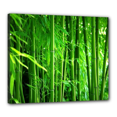 Bamboo Canvas 24  X 20  (framed) by Siebenhuehner