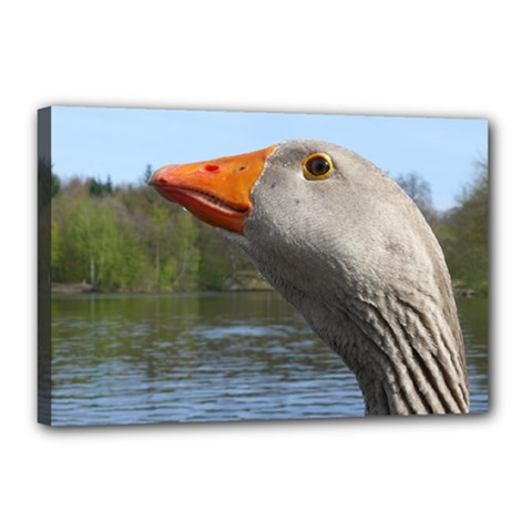 Geese Canvas 18  X 12  (framed)