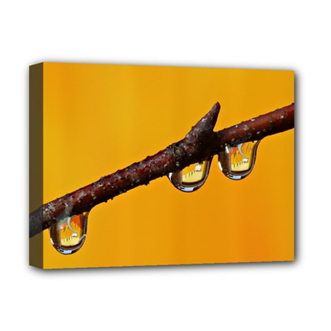 Tree Drops  Deluxe Canvas 16  X 12  (framed)  by Siebenhuehner