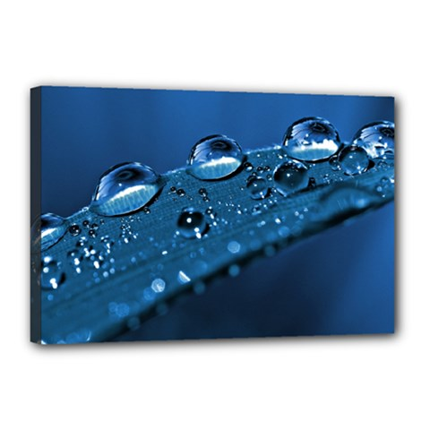 Drops Canvas 18  X 12  (framed) by Siebenhuehner