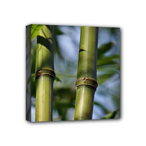 Bamboo Mini Canvas 4  X 4  (framed) by Siebenhuehner