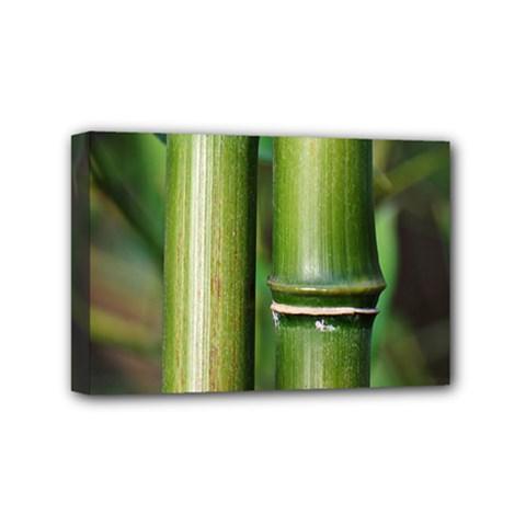 Bamboo Mini Canvas 6  X 4  (framed) by Siebenhuehner