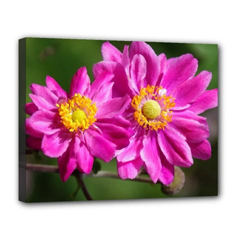 Flower Canvas 14  X 11  (framed) by Siebenhuehner