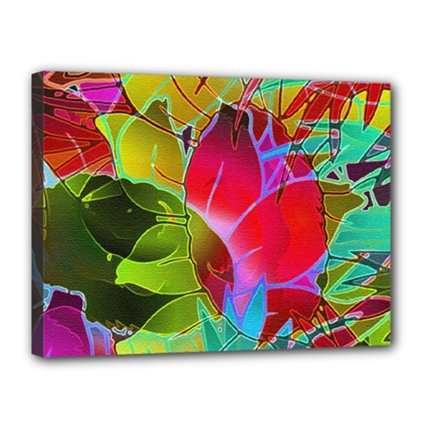 Floral Abstract 1 Canvas 16  X 12  (framed) by MedusArt