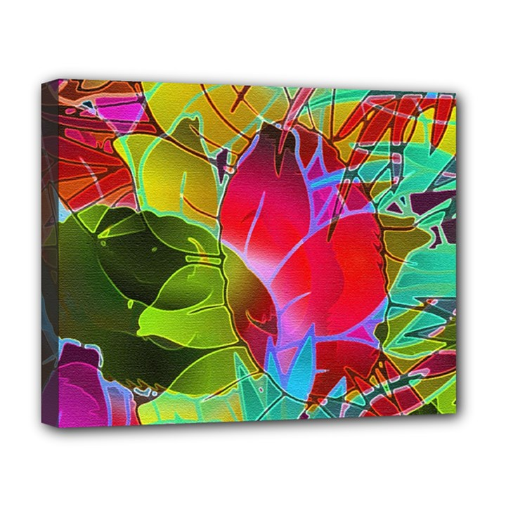 Floral Abstract 1 Deluxe Canvas 20  x 16  (Framed)