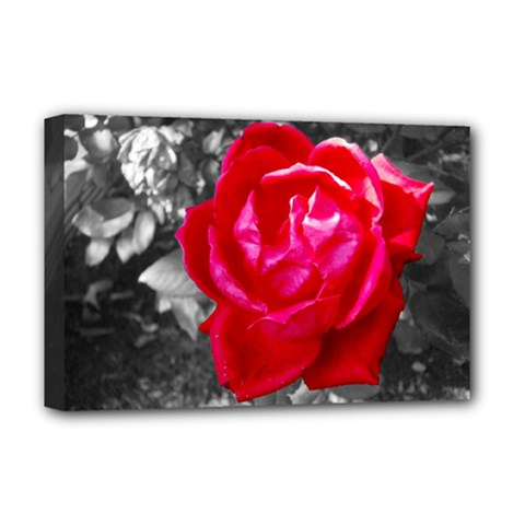 Red Rose Deluxe Canvas 18  X 12  (framed) by jotodesign
