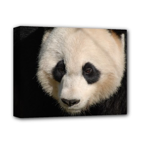 Adorable Panda Deluxe Canvas 14  X 11  (framed) by AnimalLover