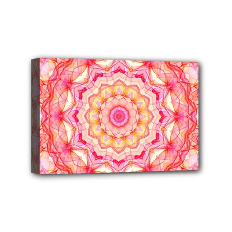 Yellow Pink Romance Mini Canvas 6  X 4  (framed) by Zandiepants