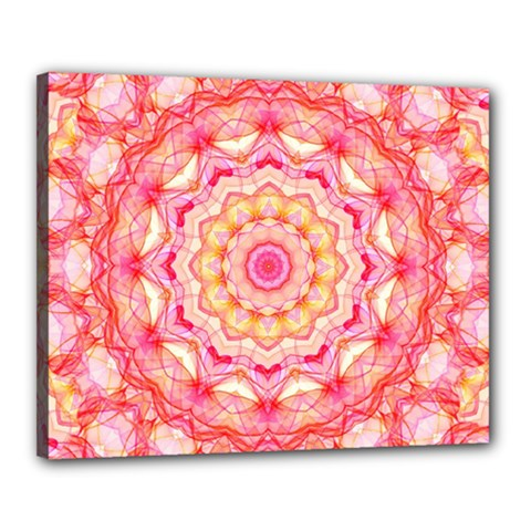 Yellow Pink Romance Canvas 20  X 16  (framed) by Zandiepants