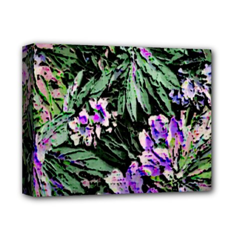 Garden Greens Deluxe Canvas 14  X 11  (framed) by Rbrendes