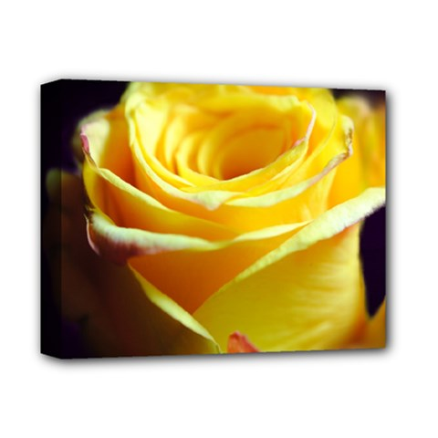 Yellow Rose Curling Deluxe Canvas 14  x 11  (Framed) by bloomingvinedesign