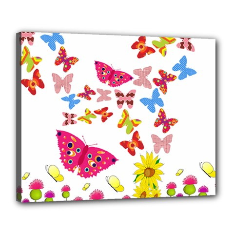 Butterfly Beauty Canvas 20  X 16  (framed) by StuffOrSomething