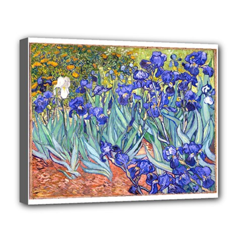 Vincent Van Gogh Irises Deluxe Canvas 20  X 16  (framed) by MasterpiecesOfArt