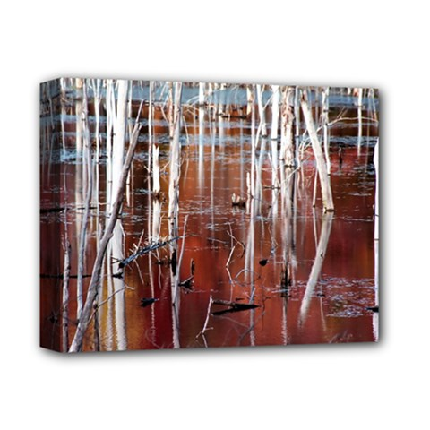 Automn Swamp Deluxe Canvas 14  X 11  (framed) by cgar