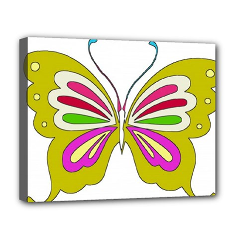 Color Butterfly  Deluxe Canvas 20  X 16  (framed) by Colorfulart23