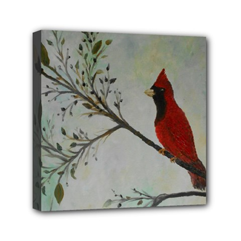 Sweet Red Cardinal Mini Canvas 6  X 6  (framed) by rokinronda