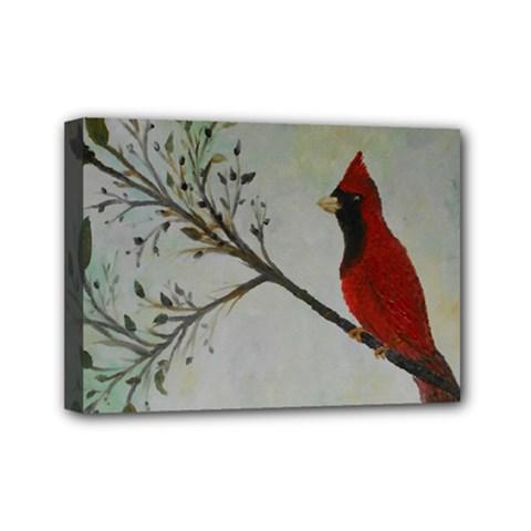 Sweet Red Cardinal Mini Canvas 7  X 5  (framed) by rokinronda