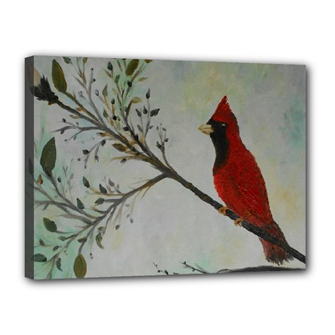 Sweet Red Cardinal Canvas 16  X 12  (framed) by rokinronda