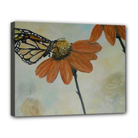 Monarch Canvas 14  X 11  (framed) by rokinronda
