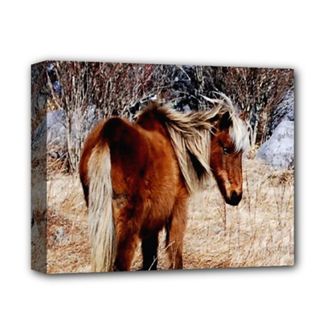 Pretty Pony Deluxe Canvas 14  X 11  (framed) by Rbrendes