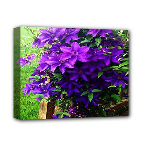 Purple Flowers Deluxe Canvas 14  x 11  (Framed) by Rbrendes