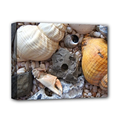 Beach Treasures Deluxe Canvas 14  X 11  (framed) by StuffOrSomething