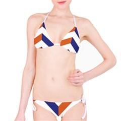 Classic Chevron 2 Bikini by Contest1888309