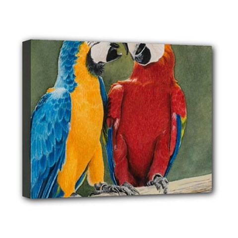 Feathered Friends Canvas 10  X 8  (framed) by TonyaButcher