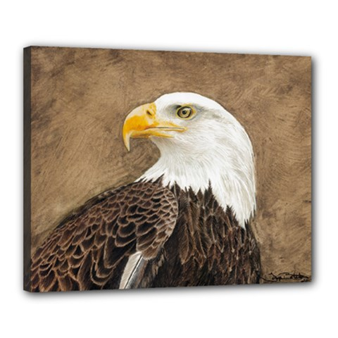 Eagle Canvas 20  x 16  (Framed) by TonyaButcher