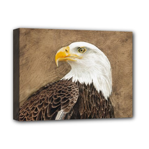 Eagle Deluxe Canvas 16  X 12  (framed)  by TonyaButcher