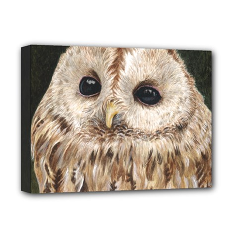 Tawny Owl Deluxe Canvas 16  X 12  (framed)  by TonyaButcher