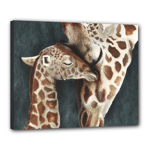 A Mother s Love Canvas 20  x 16  (Framed) by TonyaButcher