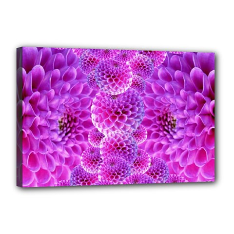 Purple Dahlias Canvas 18  X 12  (framed) by FunWithFibro