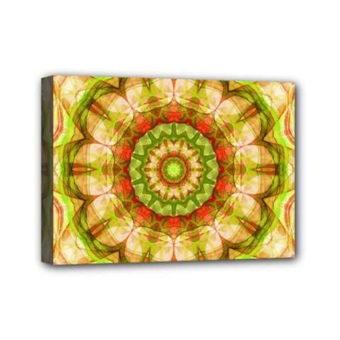 Red Green Apples Mandala Mini Canvas 7  X 5  (framed) by Zandiepants