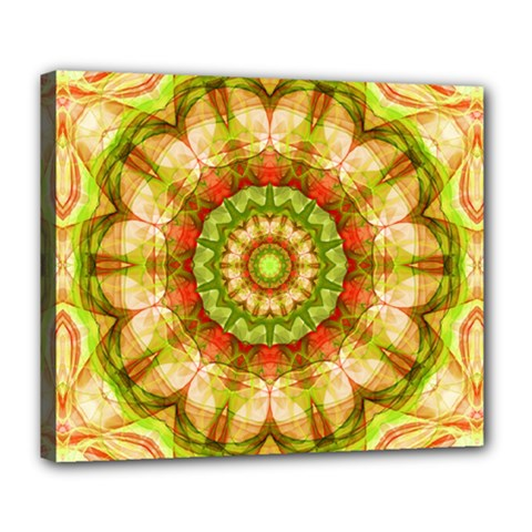 Red Green Apples Mandala Deluxe Canvas 24  X 20  (framed) by Zandiepants