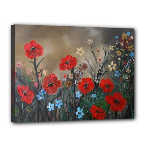 Poppy Garden Canvas 16  X 12  (framed) by rokinronda