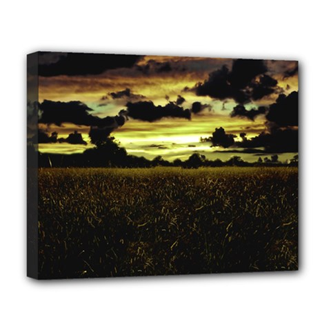 Dark Meadow Landscape  Deluxe Canvas 20  X 16  (framed) by dflcprints