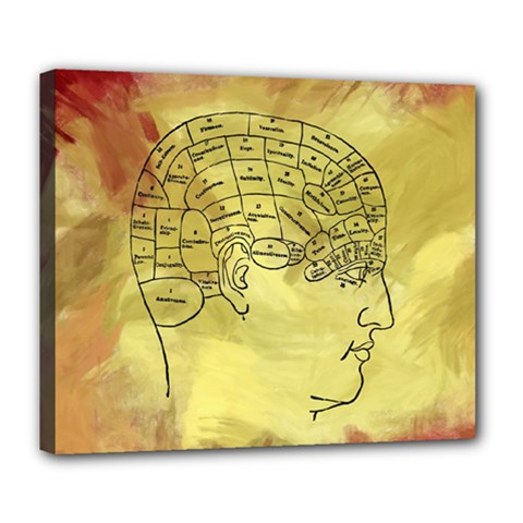 Brain Map Deluxe Canvas 24  X 20  (framed) by StuffOrSomething