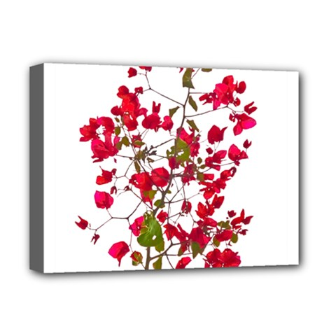 Red Petals Deluxe Canvas 16  X 12  (framed)