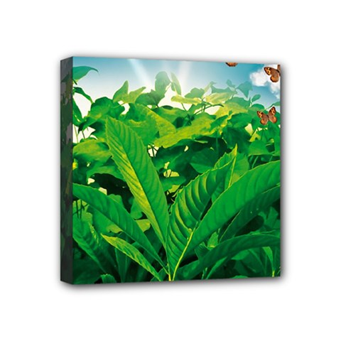 Nature Day Mini Canvas 4  X 4  (framed) by dflcprints