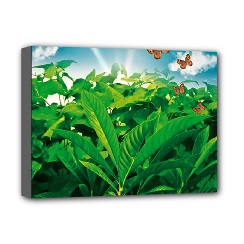 Nature Day Deluxe Canvas 16  X 12  (framed)  by dflcprints