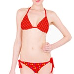 Celebrate in the Sun Beach Bikini - Bikini Set